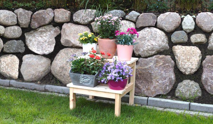 Der Blumenhocker Zwolle aus Kiefer bietet Ihnen auf zwei Stufen Platz um Ihre Pflanzen dekorativ anzuordnen.